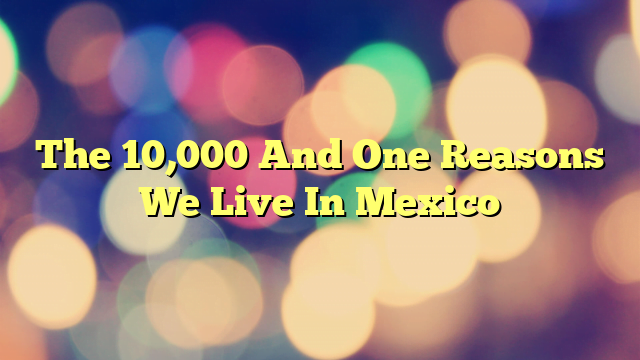 The 10,000 And One Reasons We Live In Mexico